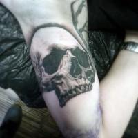 3D molto realistico nero e bianco cranio tatuaggio su braccio
