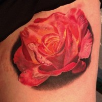 3D like very realistic pink rose tattoo on thigh