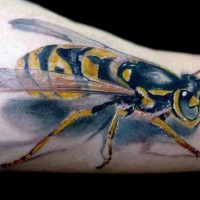 3d realistic bee tattoo by darek darecki