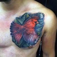 3D realistico colorato piccolo bel'uccello tatuaggio su petto