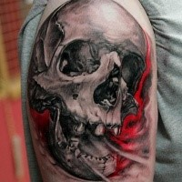 3d skull tattoo by Thomas Kynst