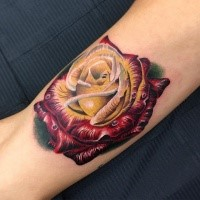 3D style amazing looking colorful rose tattoo on arm