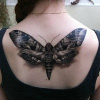 3D style cool looking black ink butterfly tattoo on upper back