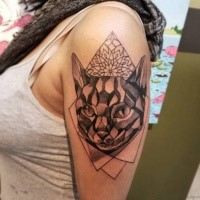 3D style  detailed cat head tattoo combined with geometrical figures