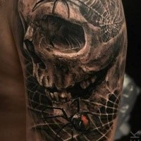 3D style detailed upper arm tattoo of human skull with spiders