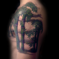 3D style natural looking colored bamboo tattoo on shoulder and chest