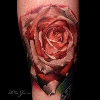3D style very detailed arm tattoo of natural rose