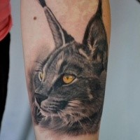 3D style very detailed arm tattoo of caracal with yellow eyes