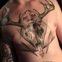 3D style very detailed chest tattoo fo animal skull