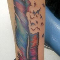 Amazing colorful feather bird tattoo on arm