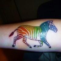 divertente vivaci colori zebra tatuaggio su braccio
