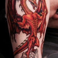 Awesome gespierd red dragon tattoo on forearm