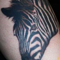 eccezionale realistico testa di zebra tatuaggio su stinco