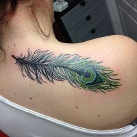 Beautiful green peacock feather tattoo on back