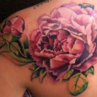bellissimo peoni colore rosa tatuaggio su schiena