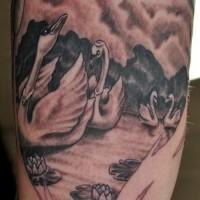 bellissimo nero e bianco cihni su lago con fiori loto tatuaggio su braccio