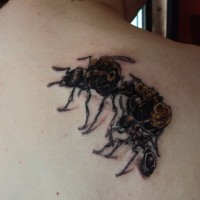 Rücken Tattoo mit Ameisen in Schwarz und Braun