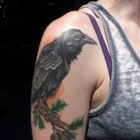 Tattoo mit schwarzem Raben mit Kiefernzapfen auf Zweig am Oberarm
