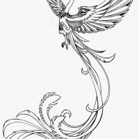 charming outline flying phoenix tattoo design by. Black Bedroom Furniture Sets. Home Design Ideas