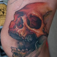 Colored skull with open jaw tattoo on knee