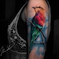 Colorfull bird tattoo on shoulder for woman