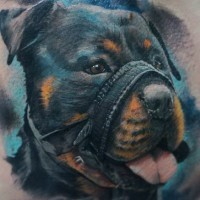 Cool colorful 3d rottweiled in muzzle tattoo