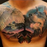 Cool colorful doberman and swan wing and butterfly tattoo for men on chest