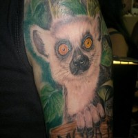 Cool colorful lemur with wooden table in tropical leaves tattoo on upper arm