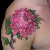 Coole rosa Pfingstrose Blume Tattoo an der Schulter