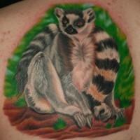 Cool realistic colorful lemur tattoo on back