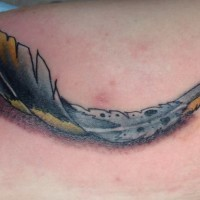 Curled colorful feather with shadow tattoo