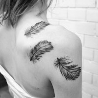 Cute black-and-white feathers tattoo on shoulder