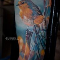 Cute colorful bird tattoo on sleeve