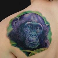 Cute violet chimpanzee head in tropics tattoo on shoulder