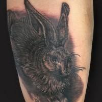 Dark fluffy hare tattoo on shin