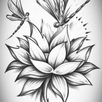 Dragonfly Tattoo Designs Page 3 Tattooimagesbiz