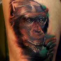 Great colorful chimpanzee head tattoo on thigh