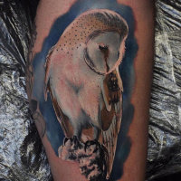 Great colorful owl tattoo