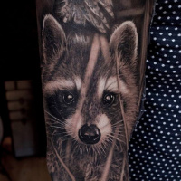 Great realistic racoon tattoo on sleeve