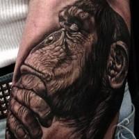 Großartiges Arm Tattoo von nicht farbigem nachdenklichem Schimpanse