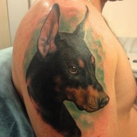 Harsh colorful doberman on green background tattoo on upper arm