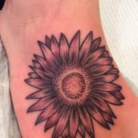interessante nero e bianco fiore aster tatuaggio  su piedi