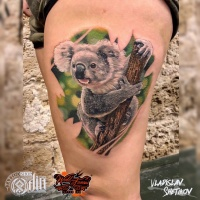 Koala bear tattoo on leg