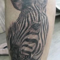 Large realistic zebra head tattoo on arm