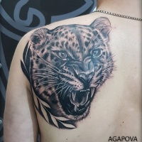 Leopard head on shoulder blade
