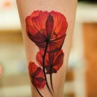 Schöne Mohnblumen Tattoo am Schienbein