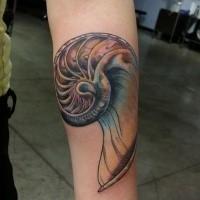 Tatuaje de antebrazo de color de estilo escolar nuevo de hermoso nautilus