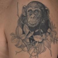 Oberarm Tattoo von schönem schwarzweißem Schimpanse in blätterigen Pflanzen