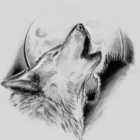 Nice Drawn Wolf Howling On Moon Tattoo Design Tattooimagesbiz