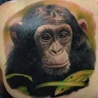 Wunderschönes realistisches Farbtattoo von Schimpansekopf in Tropen auf dem Rücken